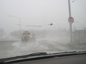 Driving in the Blizzard