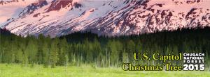 Alaska Capitol Christmas Tree